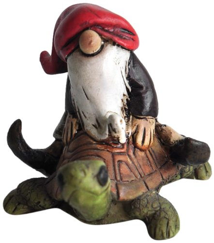 MINI TERRARIUM GNOME RIDING TURTLE 21
