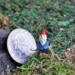 3/4″ TALL MICRO GNOME