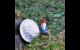 Micro Gnome