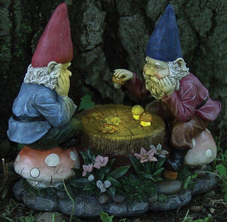 Solar Gnome Game Night dark